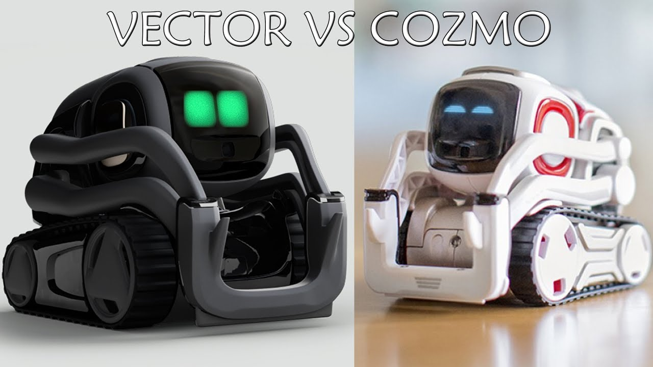 Vector vs cozmo